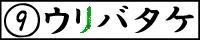9ri2_banner.jpg